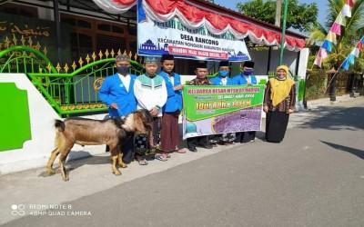 MTsN 5 Madiun salurkan hewan kurban ke beberapa masjid